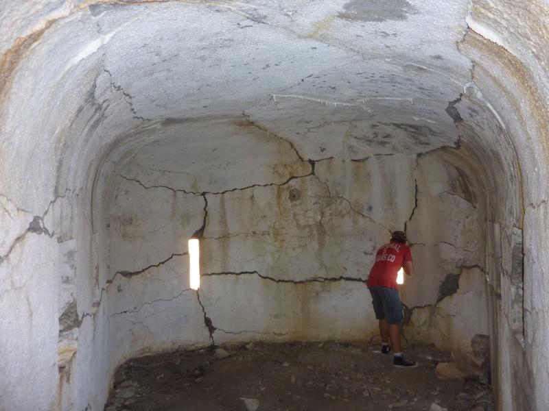 Fort des Mille-Fourches (massif de l'Authion) P1070216