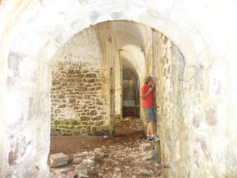 Fort des Mille-Fourches (massif de l'Authion) P1070217