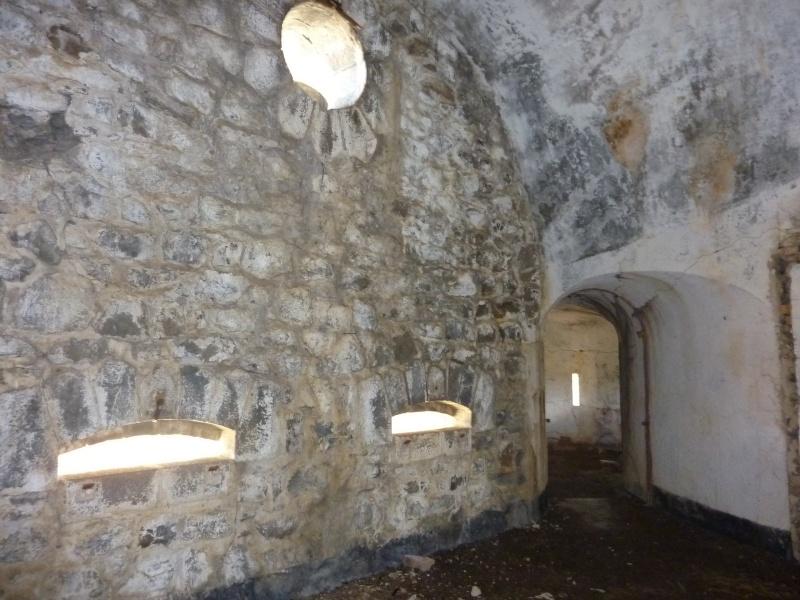 Fort des Mille-Fourches (massif de l'Authion) P1070219