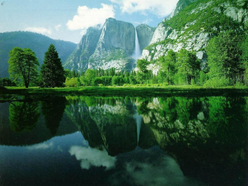 Photo Nature  410