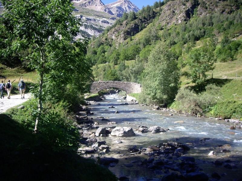 Photo Nature  Imgp2410