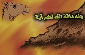 صالح (عليه السلام) Images12