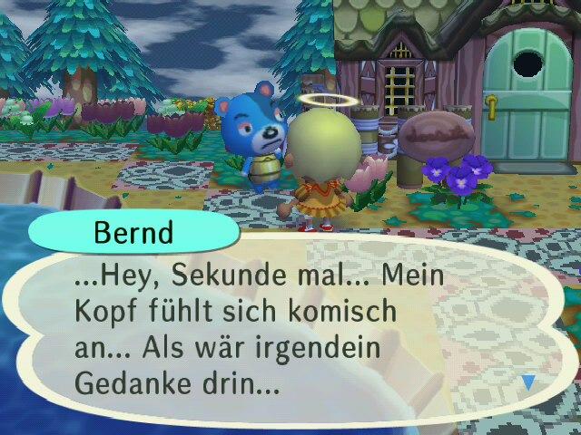 Bewohnertratsch - Seite 5 Bernd_10
