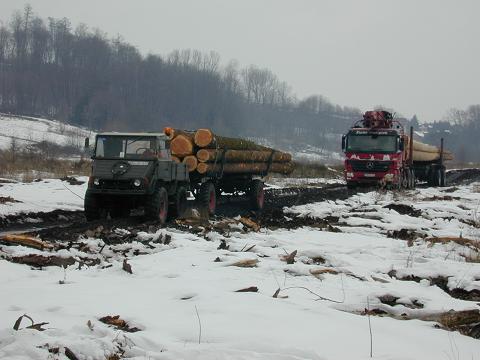 unimog mb-trac wf-trac pour utilisation forestière dans le monde - Page 20 1_spat10