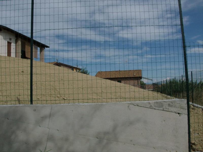 GIARDINI: FOTO ED ORGANIZZAZIONE DEGLI SPAZI - Pagina 5 00410