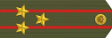 Spetsnaz, Полковник/Colonel, Commandant des gardes rouges
