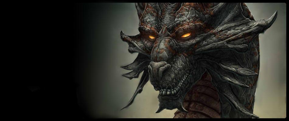 Dragon Rider's Life