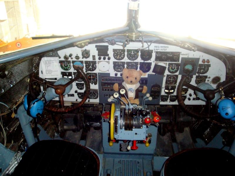 Les vols de la mascotte - Page 10 Dsc05210