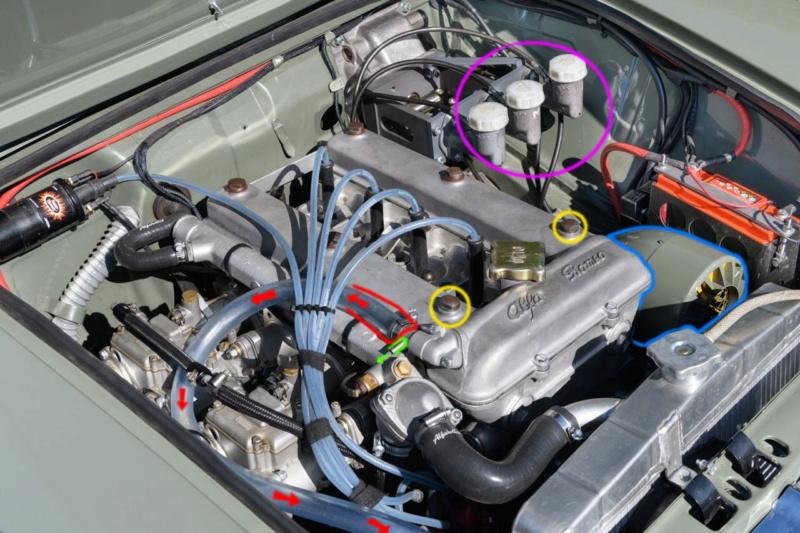 Alfa Romeo, le giardinette che non avete mai visto Dledmv10