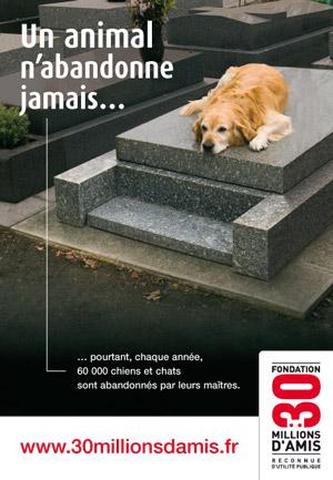 MESSAGE DE FELICITATIONS Animal10
