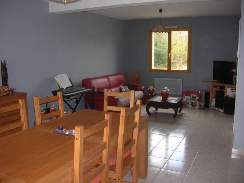 Comment harmoniser la decoration(couleur des objets)avec une cuisine(peinte orange) ouverte sur le séjour(peinture grise) svp? Dscn0619