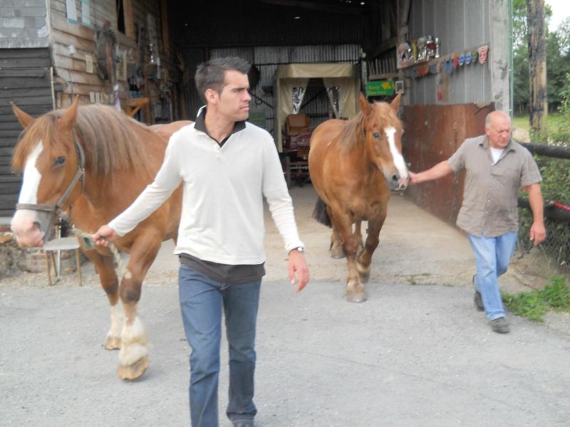 La ferme de Beaulieu, élevage de Traits Bretons Dscn2314