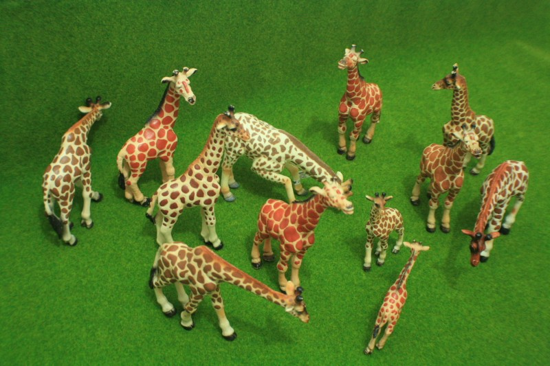 My first CollectA animals: the Beautiful Five 01011