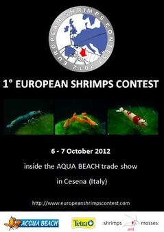 European Shrimp Contest Cesena (Italie) 06 et 07 /10/2012 1-euro10