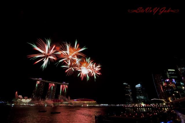 NDP Fireworks _dsc0119