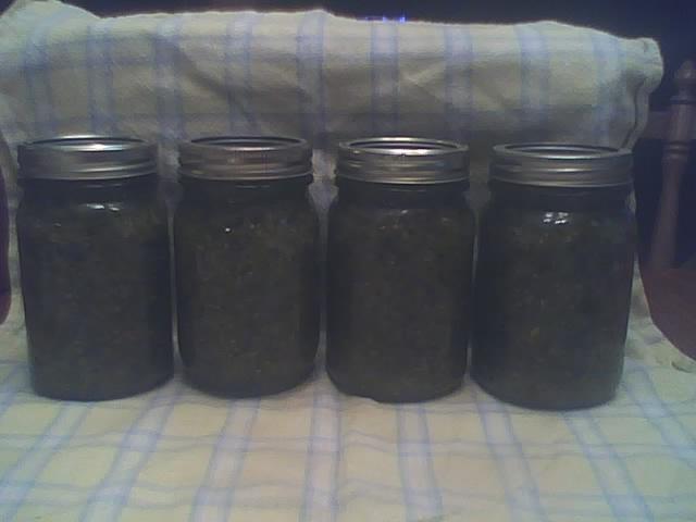 Pickle relish photos Garden14
