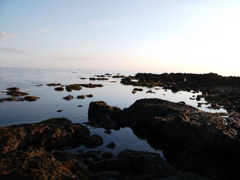 Diverses photos (pêche) Dscf0510
