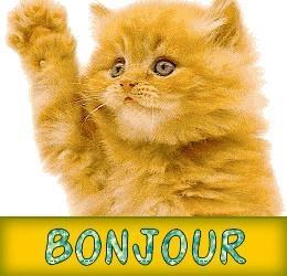 Bonjours Bonjou10