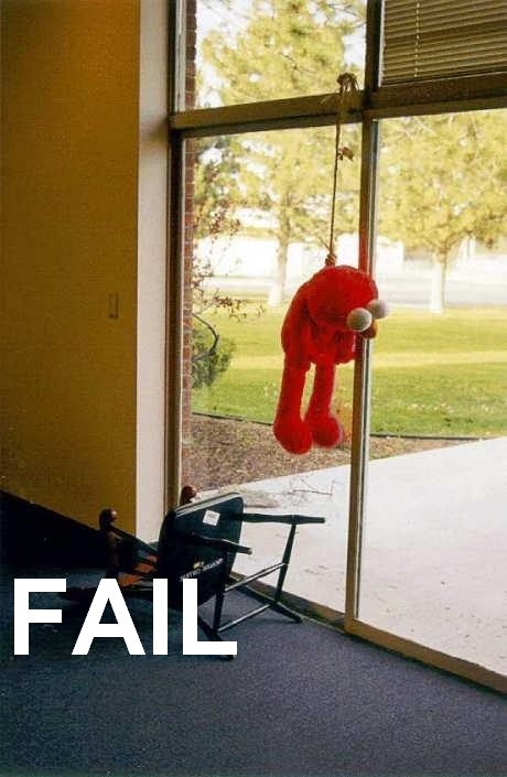 funny pictures - Page 4 Elmo-f11