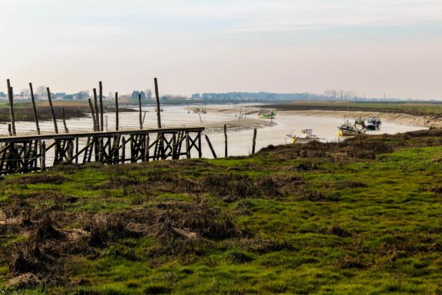 L'Aiguillon-Sur-Mer (Vendée - 85). Img_0210