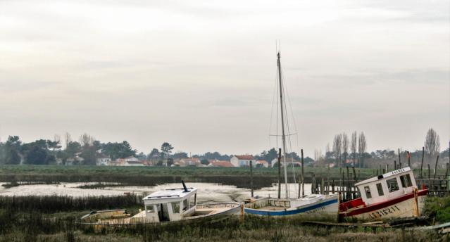 L'Aiguillon-Sur-Mer (Vendée - 85). Img_0213