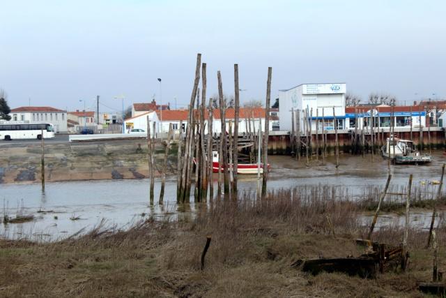 L'Aiguillon-Sur-Mer (Vendée - 85). Img_0215