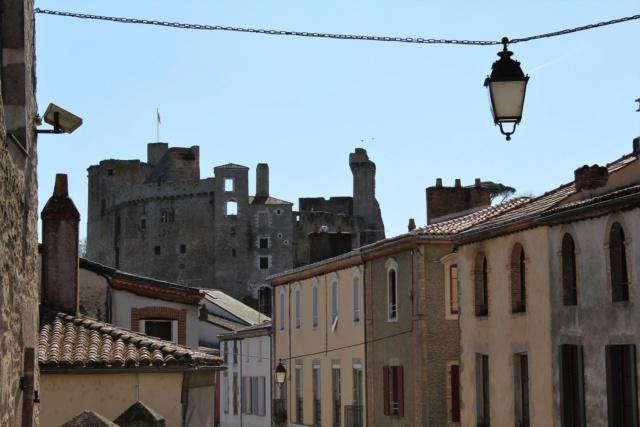Clisson (Loire-Atlantique / 44). Img_0415