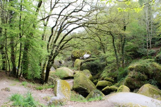 Exploration du Finistère (29). Img_0814