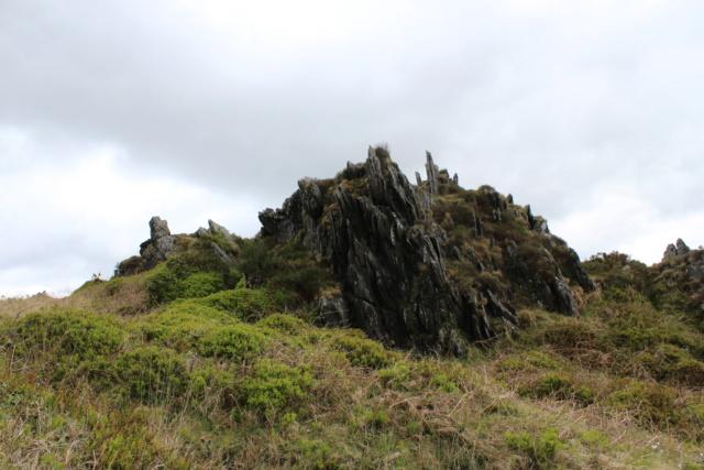 Exploration du Finistère (29). Img_0821