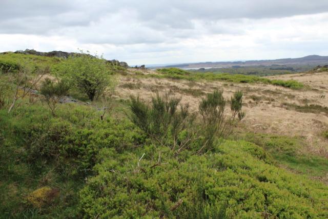 Exploration du Finistère (29). Img_0830