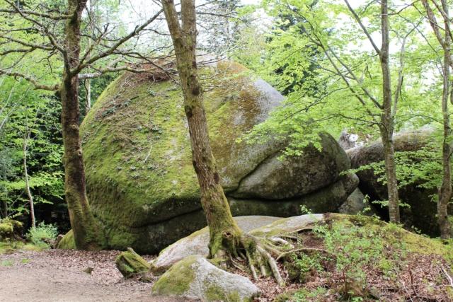Exploration du Finistère (29). Img_0914