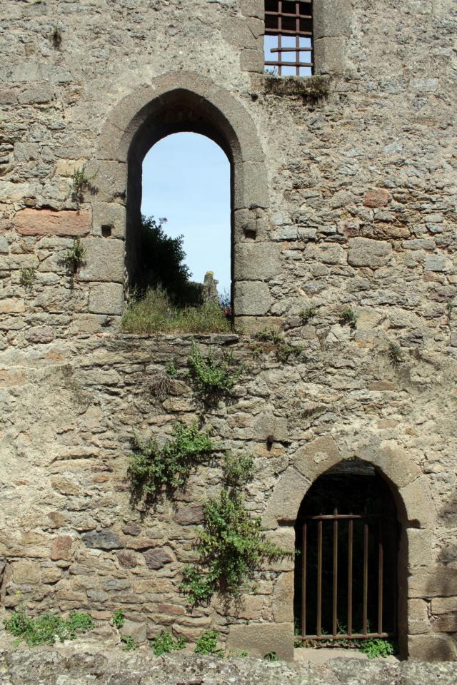 Clisson (Loire-Atlantique / 44). Img_2212