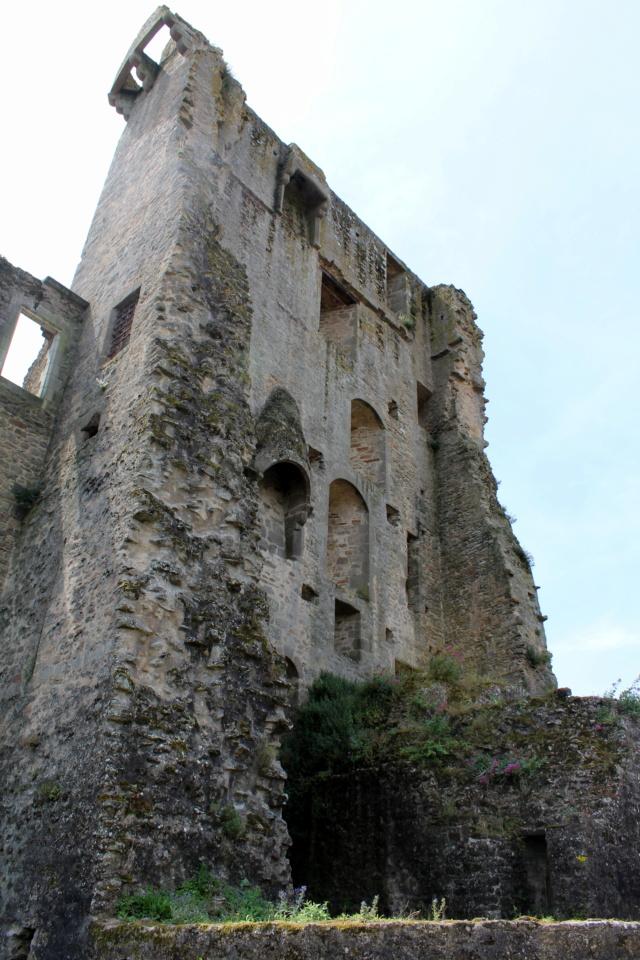 Clisson (Loire-Atlantique / 44). Img_2311