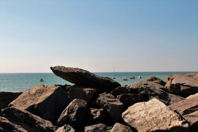L'Aiguillon-Sur-Mer (Vendée - 85). Img_2510