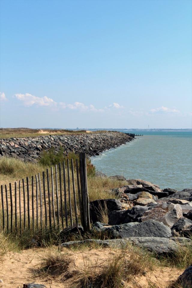 L'Aiguillon-Sur-Mer (Vendée - 85). Img_2511