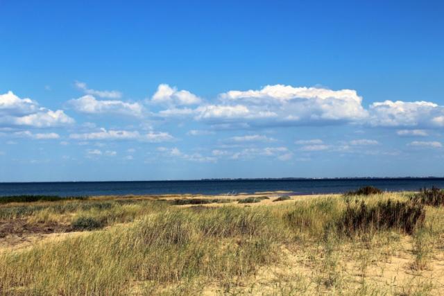 L'Aiguillon-Sur-Mer (Vendée - 85). Img_2516