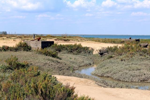 L'Aiguillon-Sur-Mer (Vendée - 85). Img_2517
