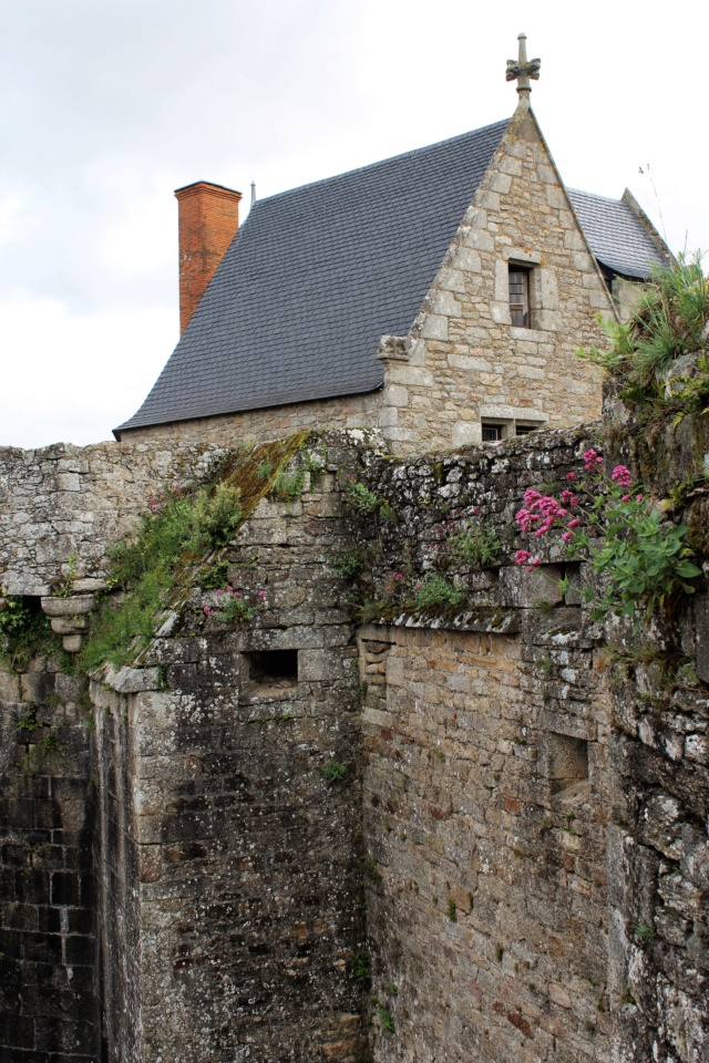 Clisson (Loire-Atlantique / 44). Img_4027