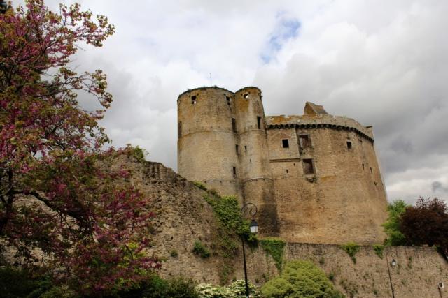 Clisson (Loire-Atlantique / 44). Img_4032