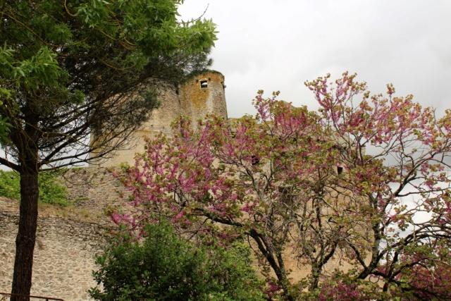 Clisson (Loire-Atlantique / 44). Img_4033
