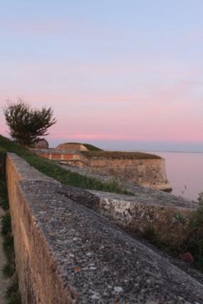 Île d'Oléron (Charente-Maritime - 17). - Page 2 Img_5514