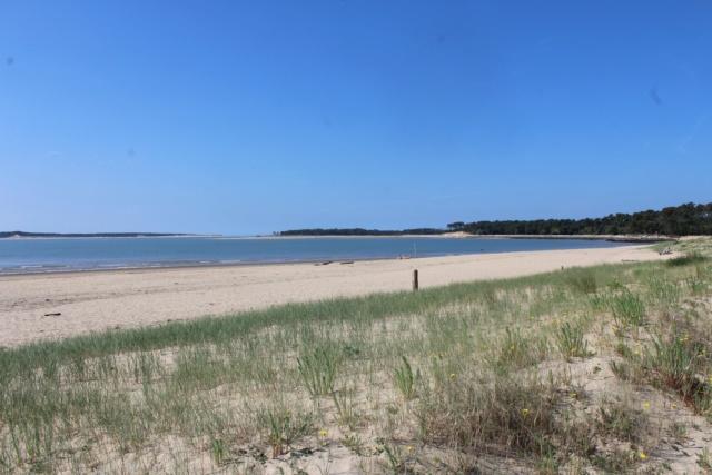 Île d'Oléron (Charente-Maritime - 17). Img_5810