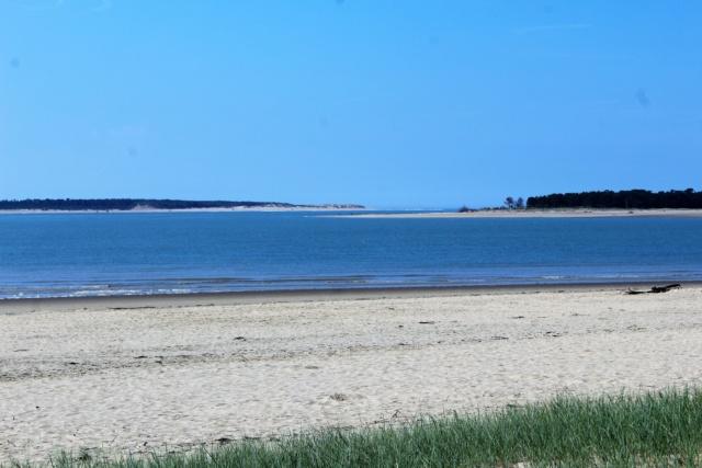Île d'Oléron (Charente-Maritime - 17). Img_5811
