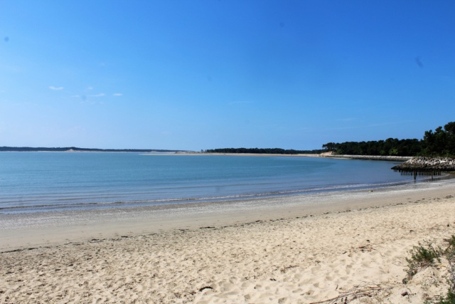 Île d'Oléron (Charente-Maritime - 17). Img_5815