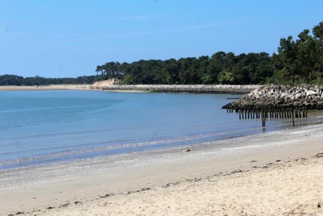 Île d'Oléron (Charente-Maritime - 17). Img_5816