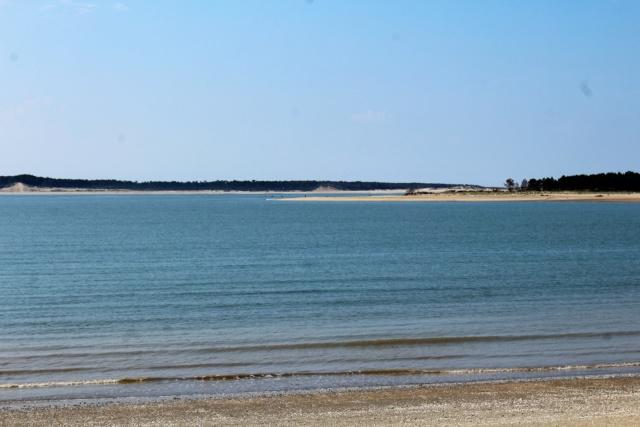 Île d'Oléron (Charente-Maritime - 17). Img_5818
