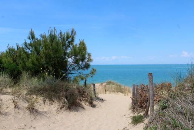Île d'Oléron (Charente-Maritime - 17). Img_5916