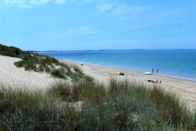 Île d'Oléron (Charente-Maritime - 17). Img_5920
