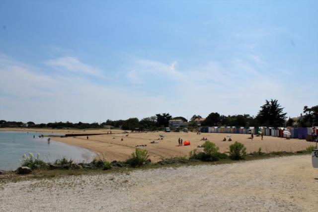 Île d'Oléron (Charente-Maritime - 17). Img_5925