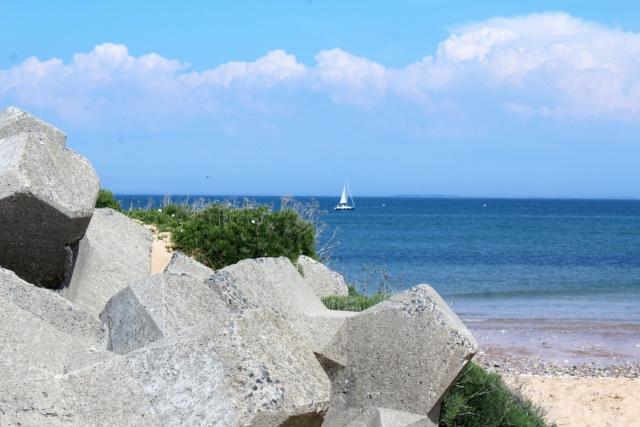 Île d'Oléron (Charente-Maritime - 17). Img_5927